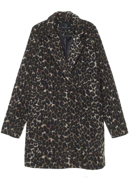 Seven Coat Leopard